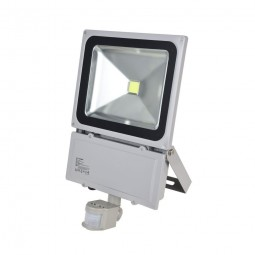LED Fluter mit Bewegungsmelder 100W 230V COB High Power Strahler IP65