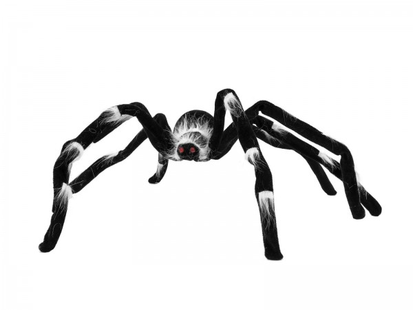 EUROPALMS Halloween Spinne 70x14x5