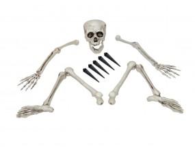 EUROPALMS Halloween Skelett, mehrteilig