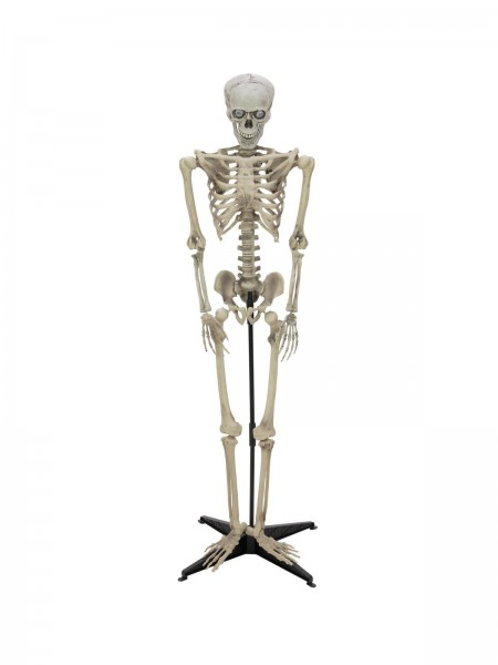 EUROPALMS Halloween Figur Cellskel 163cm