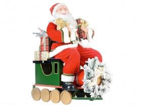 EUROPALMS Santa Express, 90cm