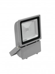 EUROLITE LED IP FL-100 COB RGB 120° FB