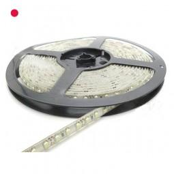 Flex LED Strip ROT 50cm 1m 2m 5m 3528 60 LED / m IP65